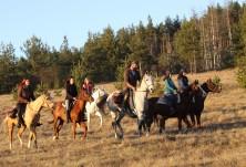 Легитимността на туризма с коне и имаме ли закон регламентиращ конния туризъм?
