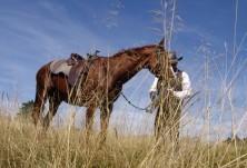 По-добро обучение = по-добра езда = по-добри грижи за коня = радостни и здрави коне